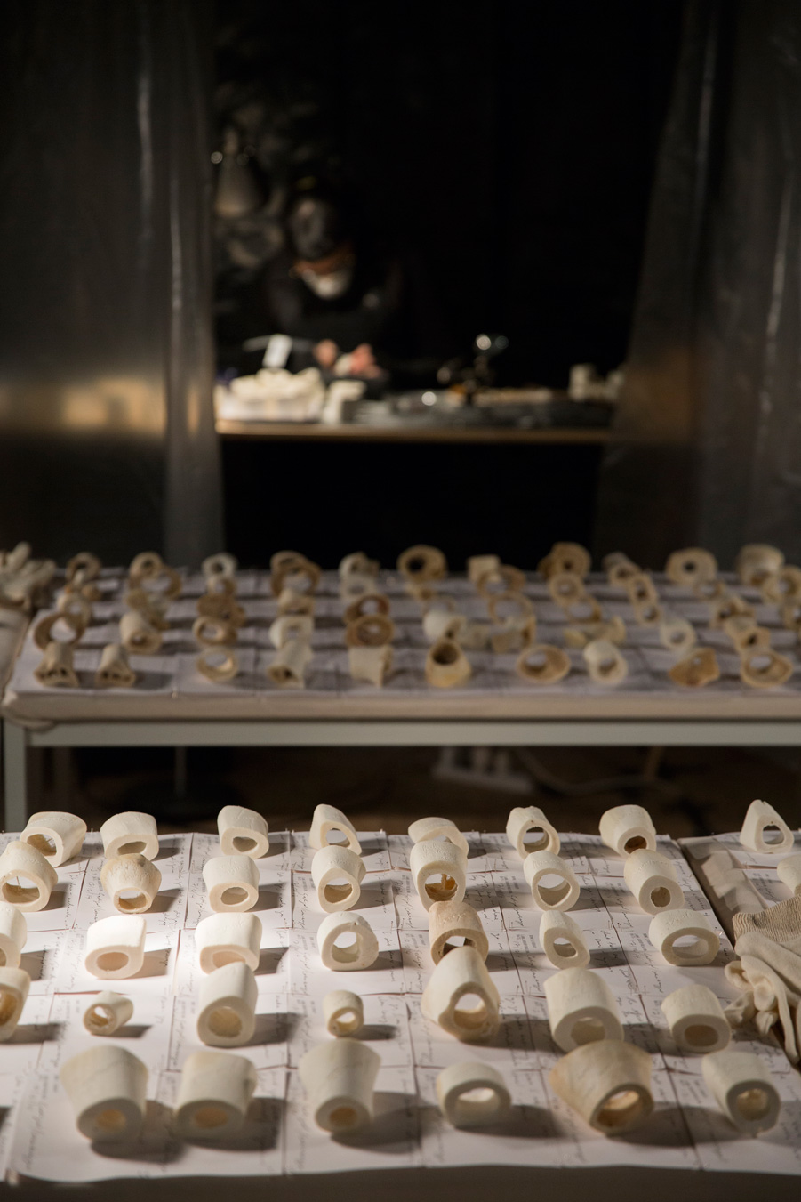 Sarah-Jane Norman, Bone Library. Venice International Performance Art Week (2014). Photograph by Monika Sobczak.