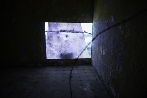 Sigalit Landau,Barbed Hula.Exhibition view.Venice International Performance Art Week (2014). Photograph by Samanta Cinquini.