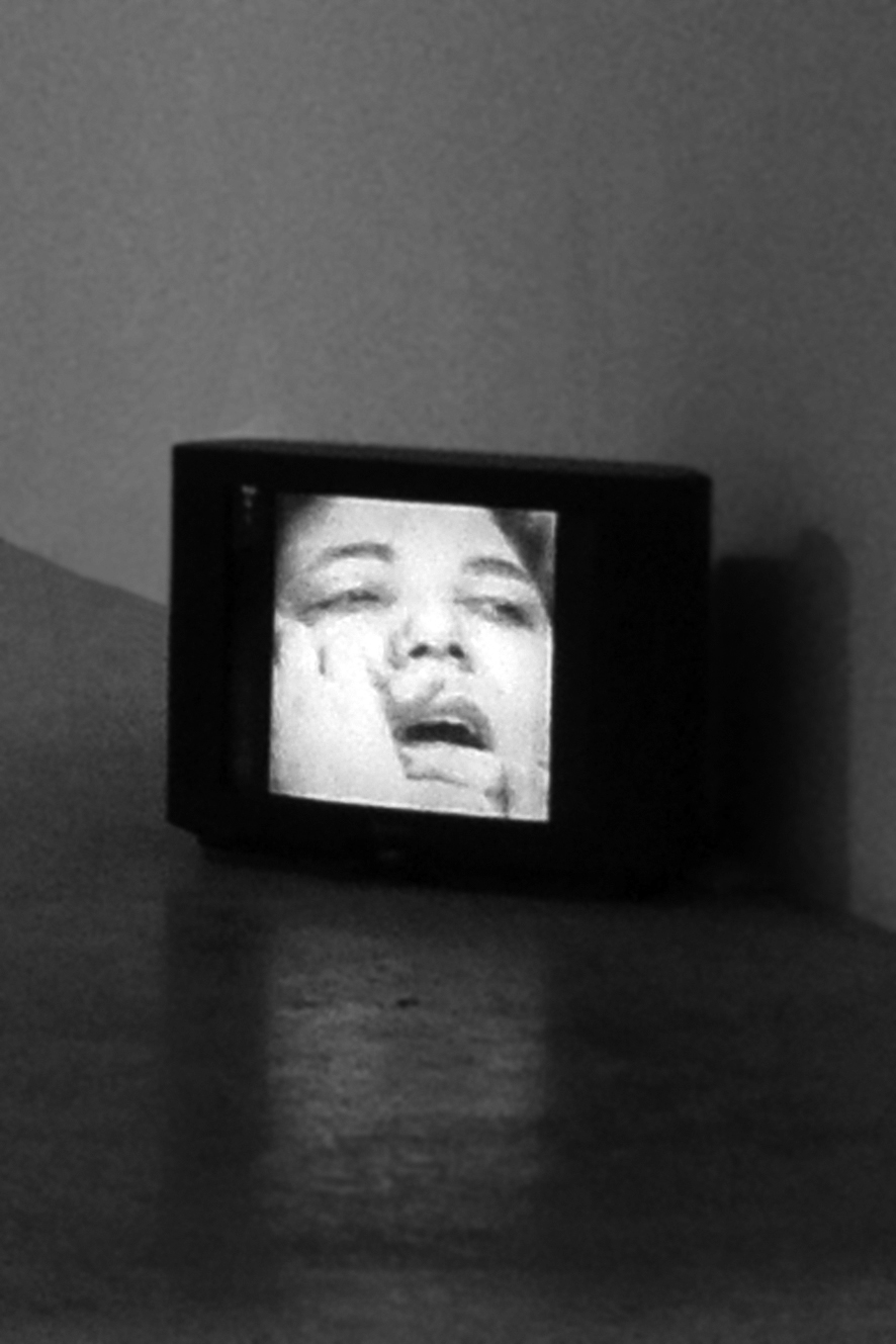 Mona Hatoum. Exhibition view of the video So Much I Want To Say (1983) at the III Venice International Performance Art Week. Photograph by We Exhibit.